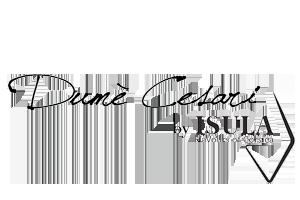 dume_cesari-logo-bwH200px