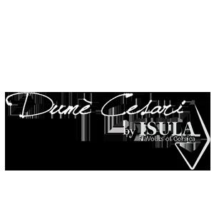 dume_cesari-logo-white